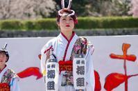 2017篠山よさこいまつりその9(播州櫻組) - ヒロパンの天空ウォーカー