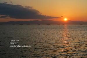 名古屋の海で - すずめtoめばるtoナマケモノ
