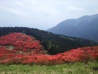 奈良葛城山 - SAIBI