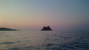 最近の釣果 - 半島ぐらし~静かな漁村でのちいさな暮らし~