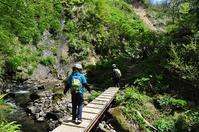 鋸山(新潟旅行2日目) - 歩のち登、ときどき走。