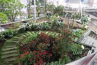 バラが咲いた三ノ宮駅のバラ園がとっても綺麗です。バラが咲いた三ノ宮駅・・・三河湾、仙台湾 - 藤田八束の日記