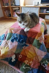 猫コタツ - 雑記帳~信州の東のほうで。