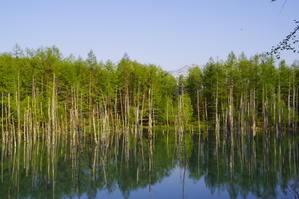青い池 - 風道