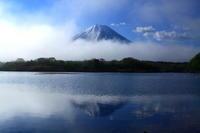 29年5月の富士(12)精進湖の富士 - 富士への散歩道 ~撮影記~