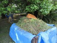 キャンパス清掃活動は 死にそうだった - 島暮らしのケセラセラ