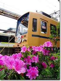 【ろ】路面電車:ろめんでんしゃ - ネコニ☆マタタビ