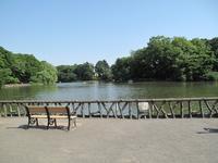 善福寺公園 - なんでバイクに乗るのでしょう?