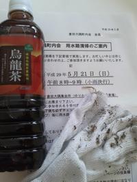 町内会☆用水路おそうじ - Strike while the iron is hot.