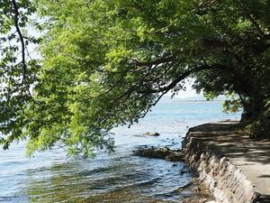 水辺散歩 - azukki的.