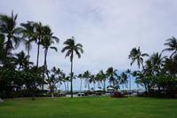 ハワイ旅行 3日目5月1日ハワイ島ホテルのビーチで 10 - Let's Enjoy Everyday!