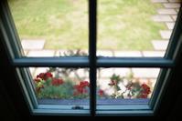 新緑の窓辺 - 片眼を閉じて見る世界には・・・。