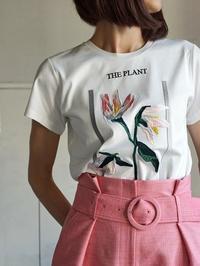 刺繍、ピンク、花、植物 - 美人レッスン帳 BELA VISTA編
