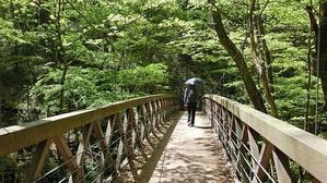 新緑のなかを旧碓氷峠まで歩く - ときどき軽井沢