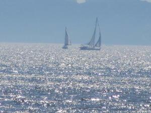 インディゴブルーな海とヨットとヒマラヤンムスク - Caramel 24 Carat