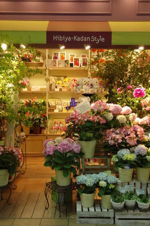 FlowerShop - 光りの音   photo gallery