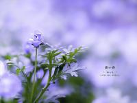 """青い春 Vol.04 - ATELIER 302 """" 時の色 """""""