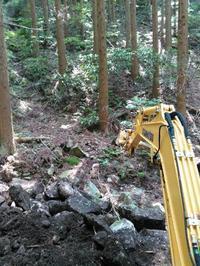自伐型林業を志す、お三方が、うちの山に見学 - 自伐型林業 施業日記