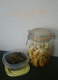らっきょうの甘酢漬けと初めましての蕗煮 - cocott+