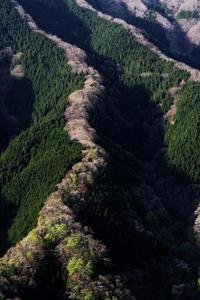 一番乗りのナメゴ谷 ① - katsuのヘタッピ風景