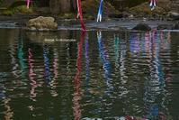 水面の彩り - Mark.M.Watanabeの熊本撮影紀行