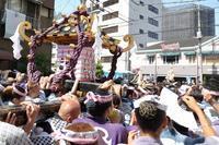三社の掛け声は「オイサ~、オイサ~」。氏子44町会の神輿100基が練り歩きました(台東区、浅草) - 旅プラスの日記