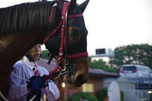 キングタイド 13戦目@大井競馬場8R 2017.5.22 - ダーレージャパン生産馬アドマイヤムーン産駒「キングタイド」のブログ!