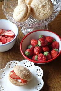 Hummingbird cake & Bouchée - Baking Daily@TM5