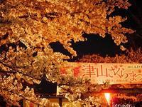ありがとう☆圧倒的桜2017 メモワール・・・☆ - 花が教えてくれたこと