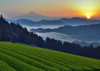 吉原 - 富士山に夢中