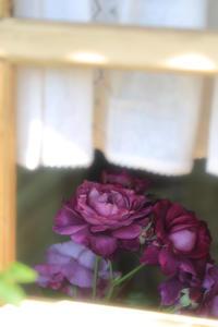 My line of sight 84 - hearty's casket