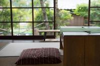 昭和ガラスと新緑と - もぐらの散歩道