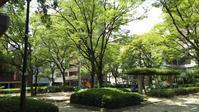 広島市 国泰寺公園 - 武内まさる