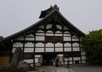 天龍寺から嵐山(京都) - お茶にしませんか