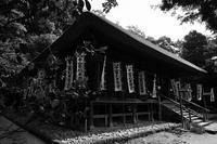 鎌倉散歩「杉本寺」 - ようこそ風の散歩へ