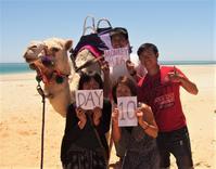 全長5000㎞!西オーストラリア縦断ロードトリップ~Day10:モンキーマイア→シェルビーチ→カルバリー - 南米・中東・ちょこっとヨーロッパのアイスクリーム旅