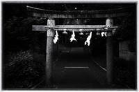 散歩長岡京-50 - Hare's Photolog