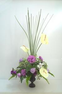 5月のNHK名古屋文化センター高等科の花は「ファウンテン」 - クレッセント日記