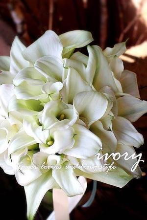 『昨日の婚礼から??』 -  Flower and cafe 花空間 ivory (アイボリー)