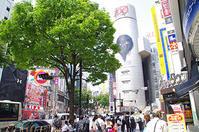 5月22日(月)今日の渋谷109前交差点 - でじたる渋谷NEWS