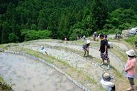 熊野の旅 昨日は「小満」とやら - LUZの熊野古道案内