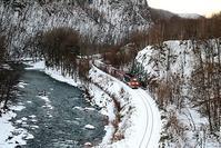 藤田八束の心に残りすぎる貨物列車の写真・・・遠軽・白滝での貨物列車「レッドベア」の魅力 - 藤田八束の日記