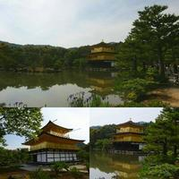 金閣寺 - NATURALLY