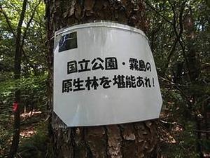 アバダントしらとり郷土の森+甑岳 - tekotanのあしあと