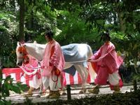 まことの祭り(Festival of Fesitivals) - ももさへづり*やまと編*cent chants d'une chouette (Nara)
