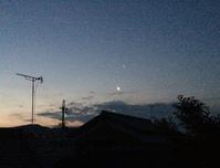 明けの明星は月の近くで光る - マリカの野草画帖