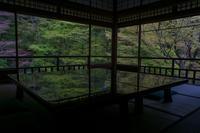 瑠璃光院~新緑・春の特別拝観 - 鏡花水月