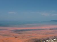 赤い海 - azukki的.