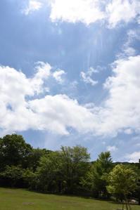 夏色 - (=^・^=)の部屋 写真館