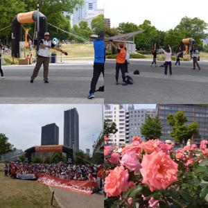 大阪北摂のノルディック・ウォーク!TERVE北大阪のブログ